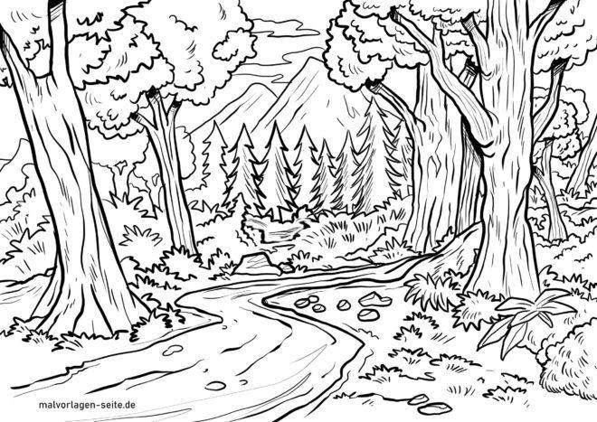 Boyama Sayfasi Orman Ucretsiz Boyama Sayfalari