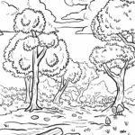 Ausmalbild Wald - Malvorlage Laubwald zum Ausmalen für Kinder