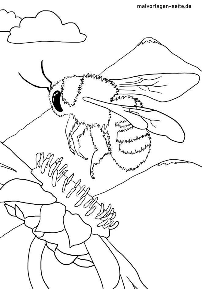 malvorlagen insekten spielen  tiffanylovesbooks