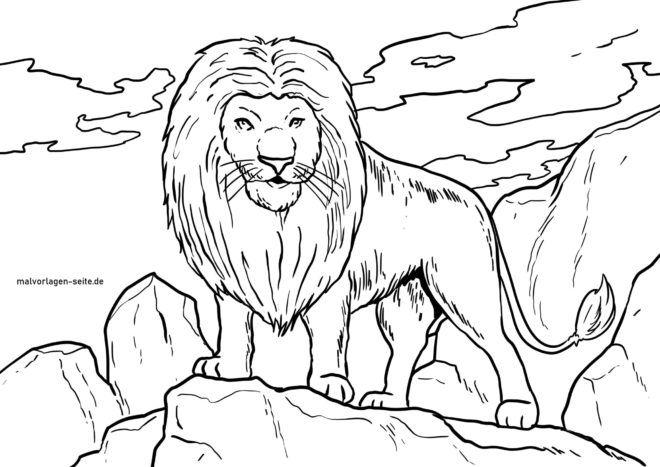 malvorlage löwe  wilde tiere  kostenlose ausmalbilder