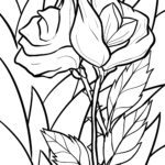 Coloring page rose - plants