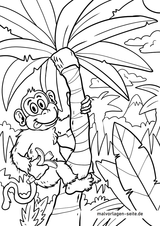 Bojanka majmun