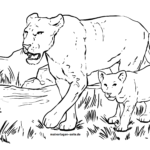 Coloring page lioness | Wild animals