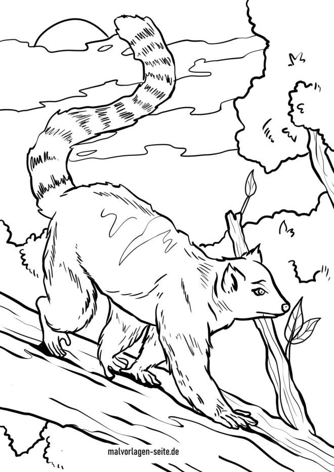 Ring-tailed Lemur Colouring Pages - Coloring Home | 933x660