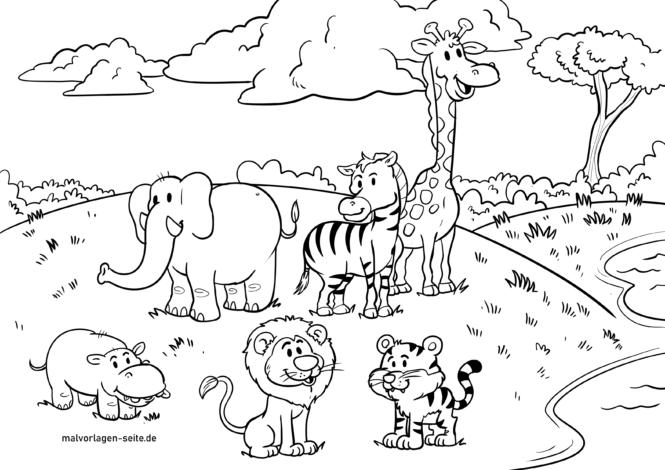 Malvorlage Safari