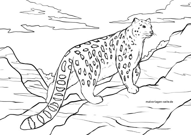 Malvorlage Schneeleopard