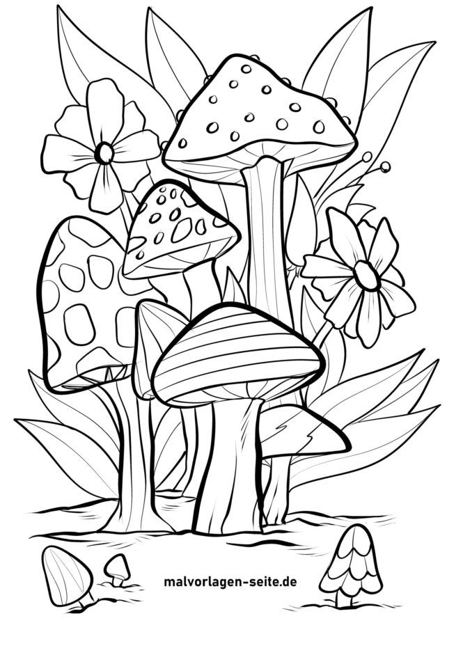 Malvorlage Pilze auf einer Wiese