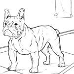 Coloring page French bulldog dogs