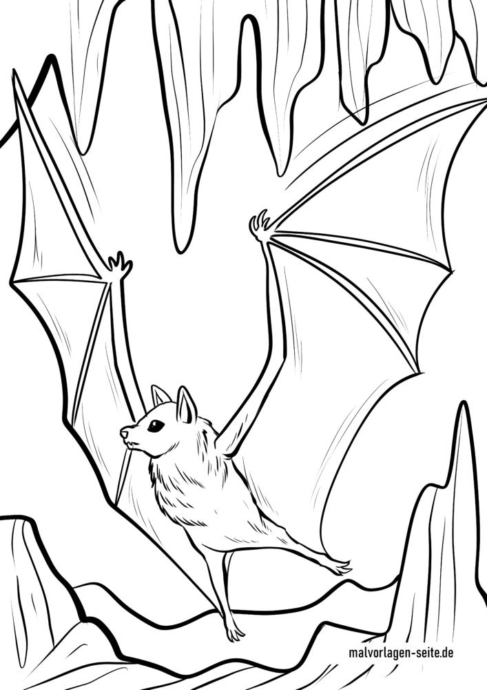 Malvorlage Fledermaus Kostenlose Ausmalbilder