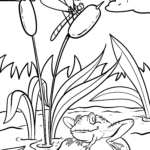 Coloring page frog | animals