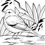 Coloring page blackbird