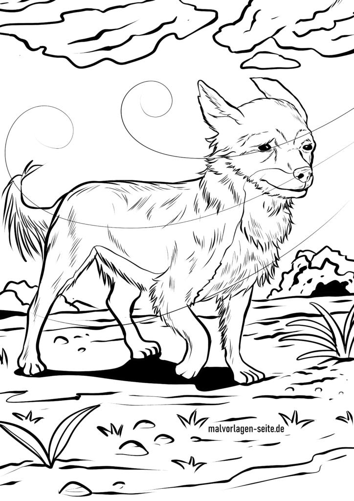 malvorlage chihuahua  hunde  kostenlose ausmalbilder