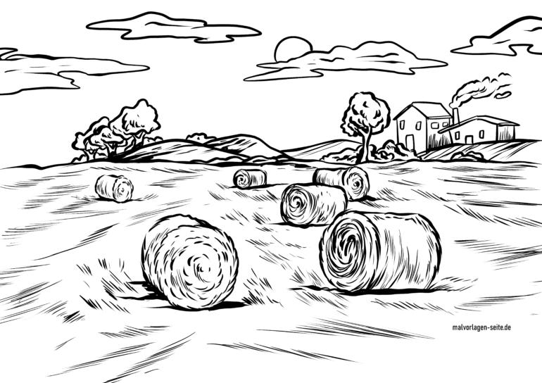Malvorlage Feld mit Strohballen