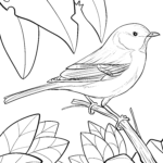 Coloring page titmouse