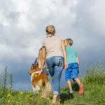 Perilaku yang benar dalam badai - pertanyaan anak-anak