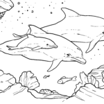 Coloring page dolphins | Animals in the sea