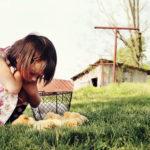 Odmor na farmi | odmor