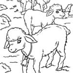 Χρωματισμός σελίδα πρόβατα