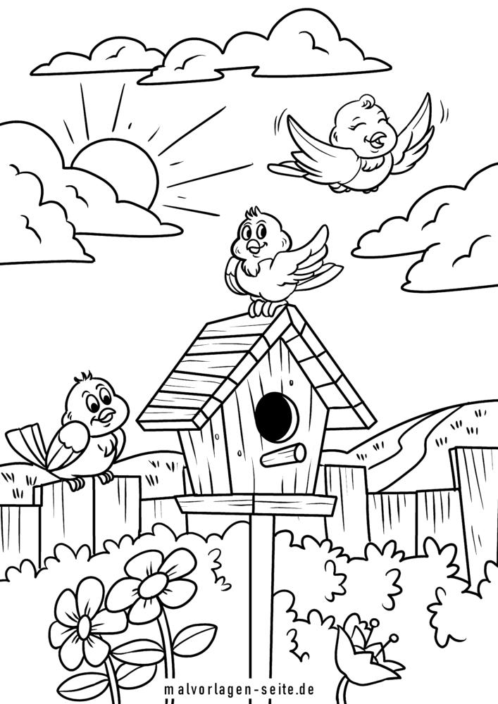 malvorlage vogelhäuschen | vögel - kostenlose ausmalbilder