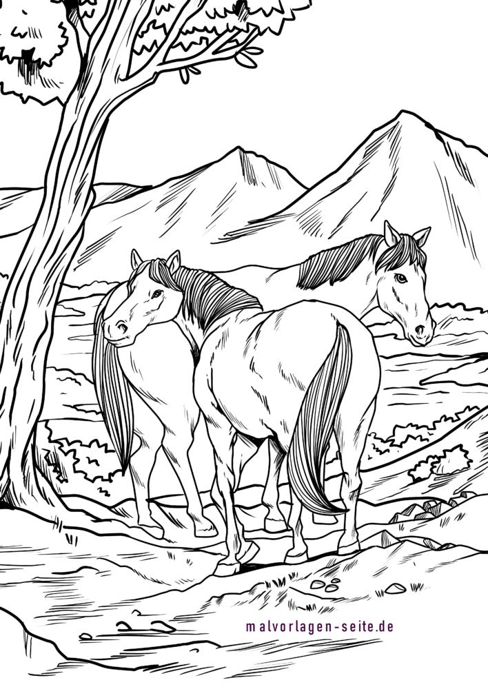 malvorlage wildpferde  pferde  kostenlose ausmalbilder