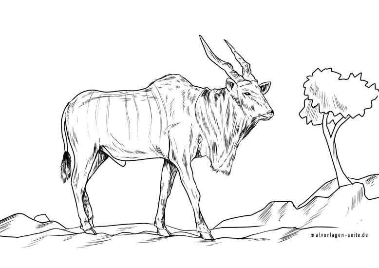 Элэн гөрөөсийг будах хуудас