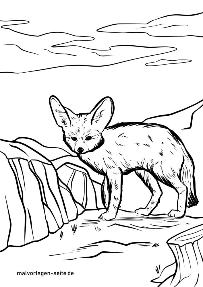 Coloring Page Fennec Desert Fox Animals Free Coloring Pages