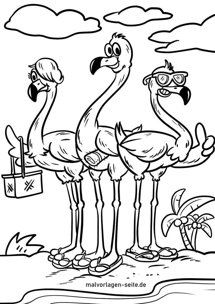 malvorlage flamingos  vögel  kostenlose ausmalbilder