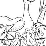 Coloring page goose with chicks | Birds farm