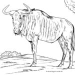 Malvorlage Gnu | Wilde Tiere
