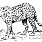 Koloreztatzen lehoinabar | Animali basatiak