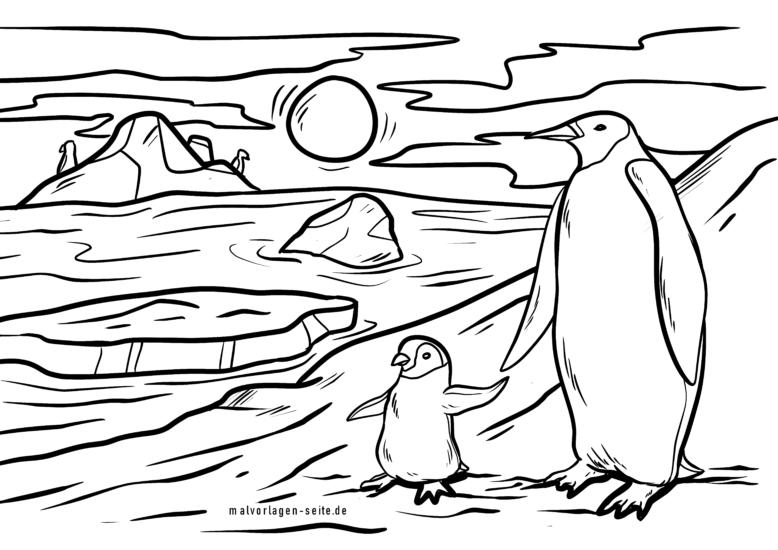 Malvorlage Pinguine