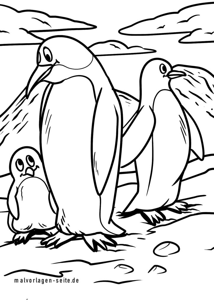 malvorlage pinguine  pinguin vögel  kostenlose ausmalbilder