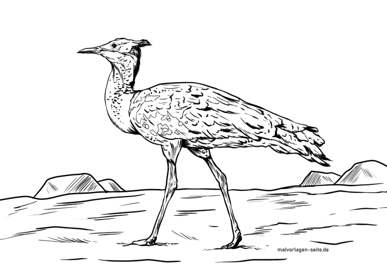 Coloring page giant bustard