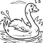 Coloriage cygne | Des oiseaux