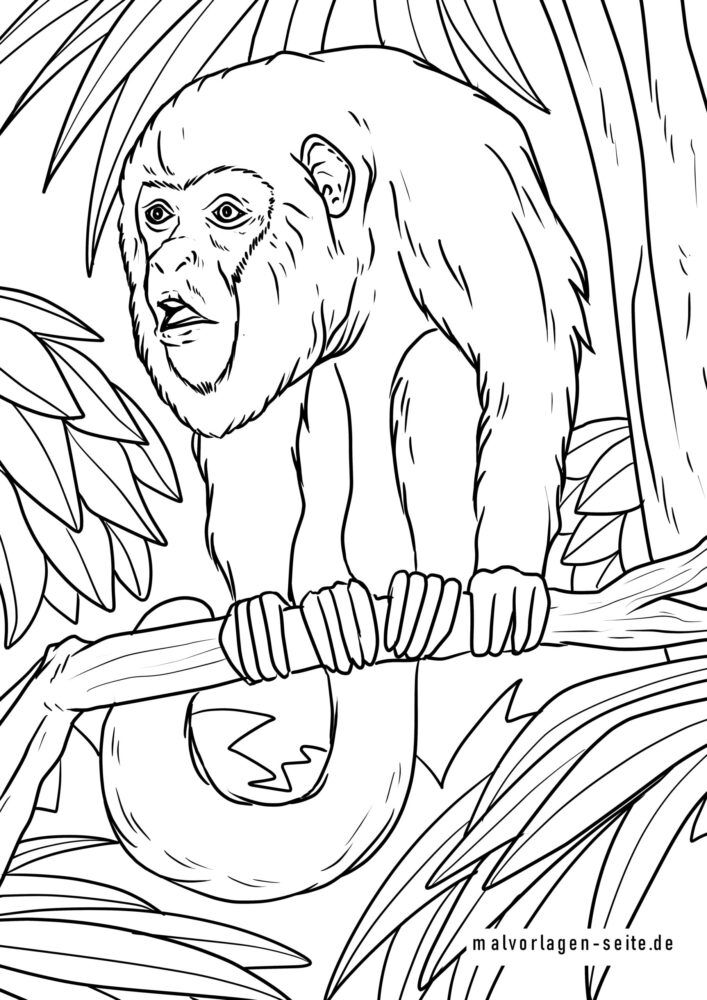 Coloring page howler monkey