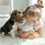 Dog as a pet for children
