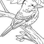 Coloring page Jägerlieste / Kingfisher