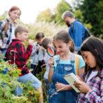 Natur erleben und draußen spielen | Erziehung