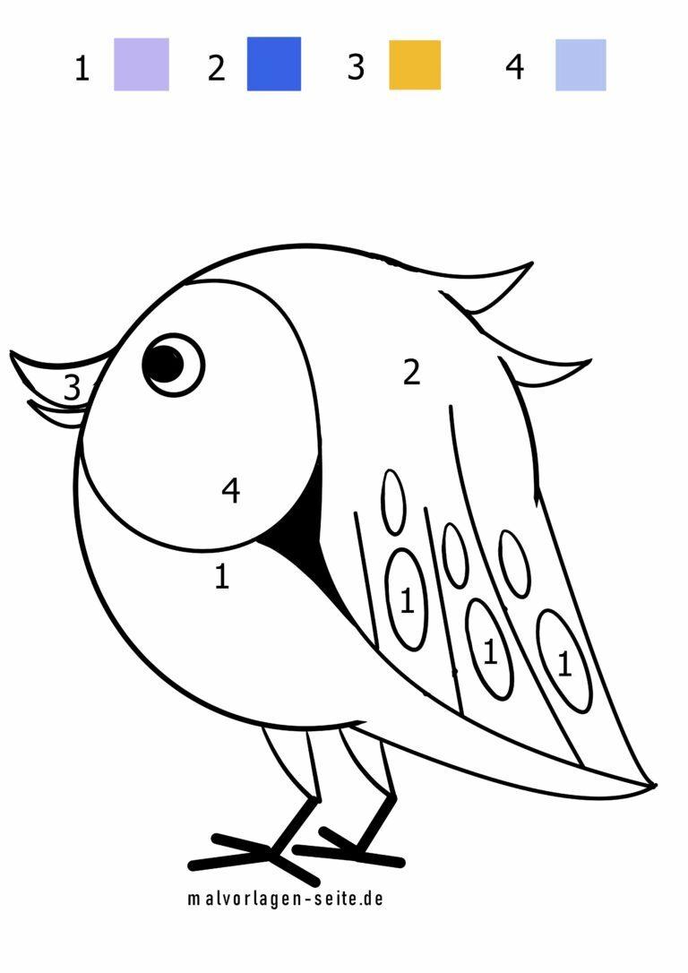 malen nach zahlen  vogel  kostenlose ausmalbilder