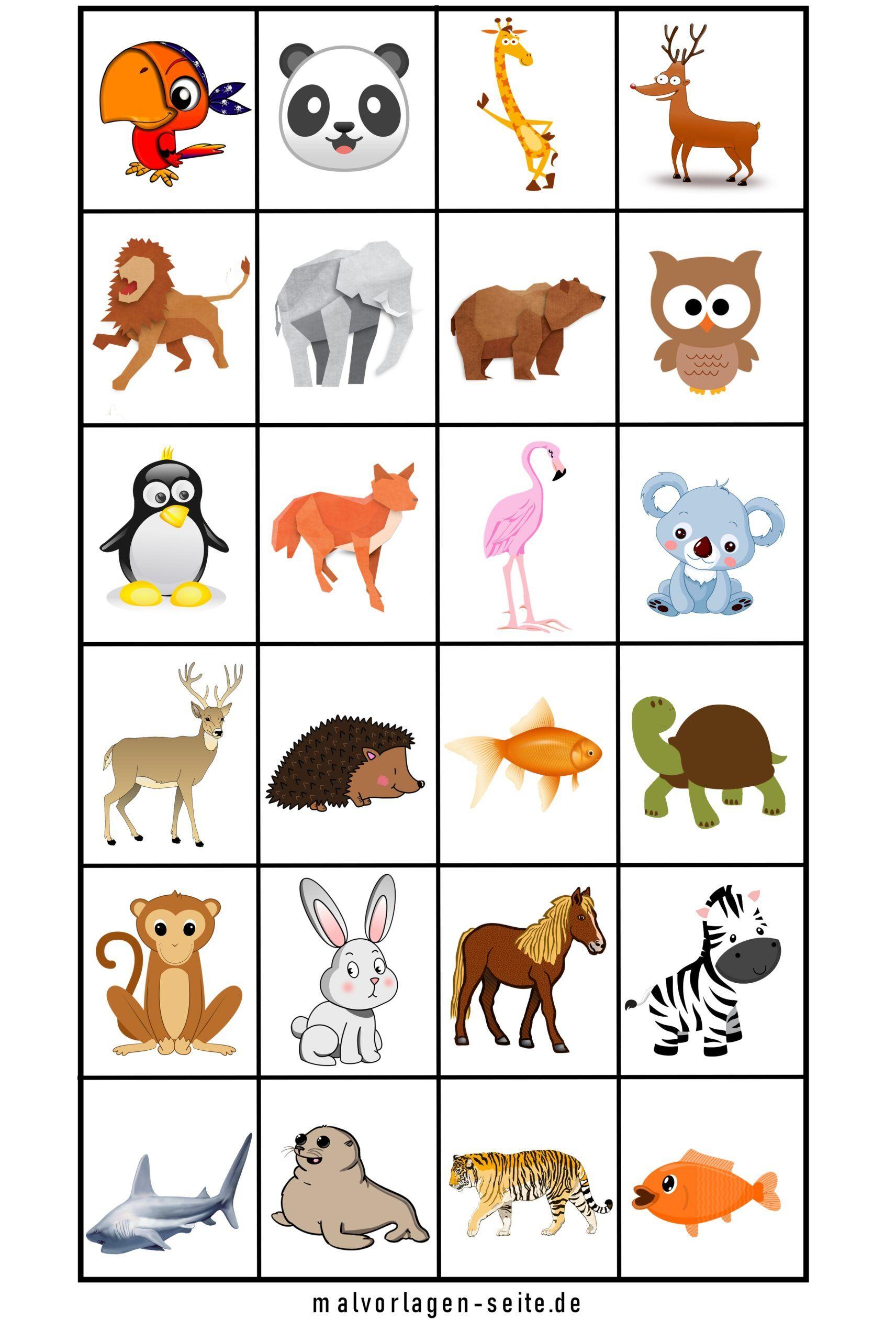 Memo templates animals