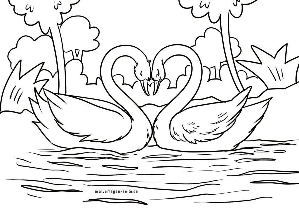 Coloring page swans | Birds