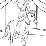 ຫນ້າສີ circus pony