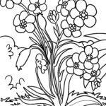 פרח דף צביעה | פרחים וצמחים