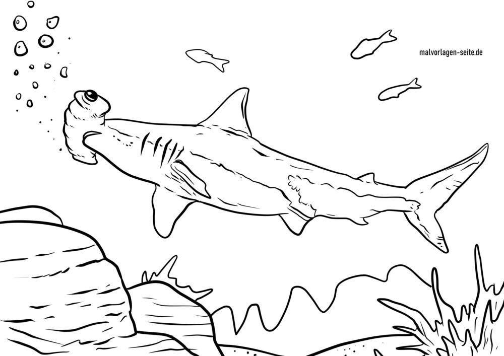 ຫນ້າສີ hammerhead shark