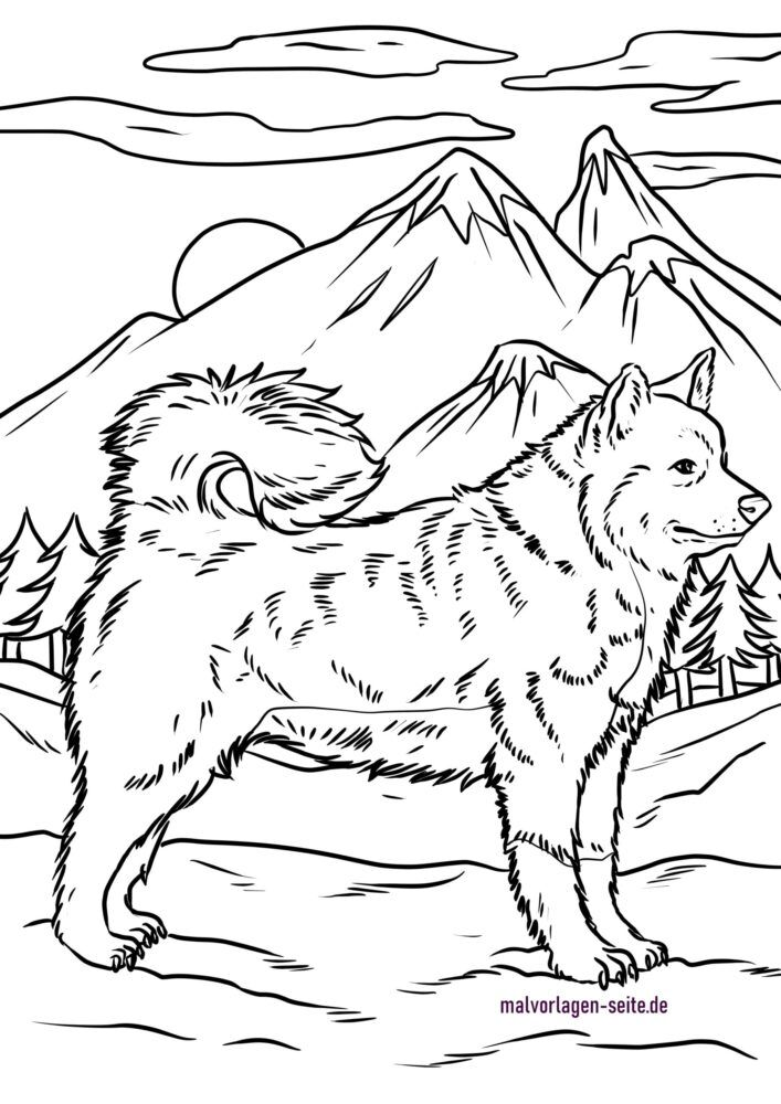 Dibujo para colorear huskey