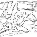 Tegninger til farvelægning ichthyosaurs