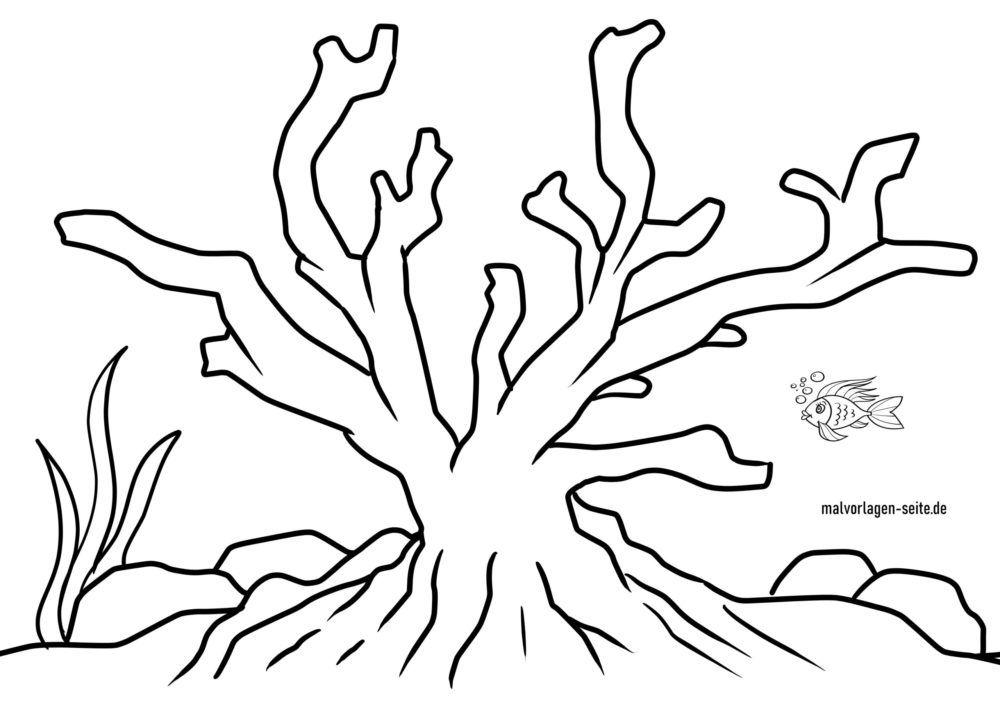 malvorlage koralle | tiere im wasser - kostenlose ausmalbilder