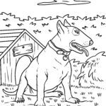 Coloring page Pitbull / Bull Terrier | dogs