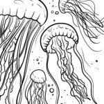 Stranica za bojanje meduza | Životinje u vodi