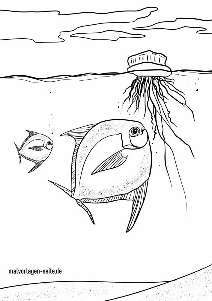 Coloriage méduse et poisson